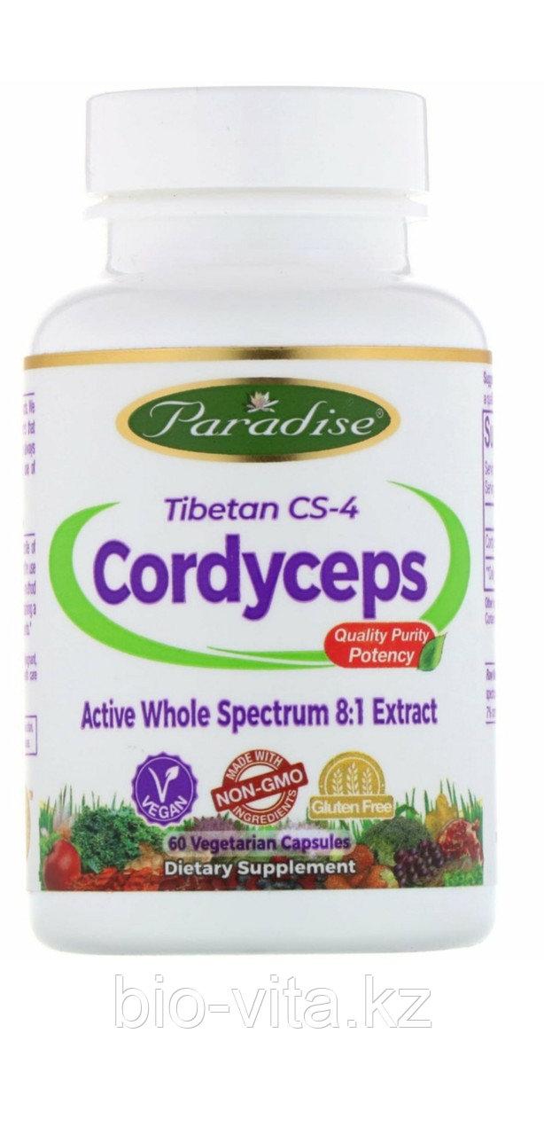 Кордицепс, Cordyceps  60  капсул.400 мг.  Paradise