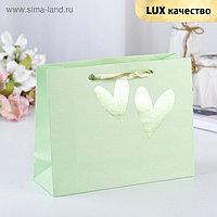 Пакет ламинированный «Любовь», люкс