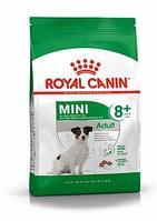 Сухой корм для собак мелких пород от 8 до 12 лет Royal Canin Mini Adult 8+