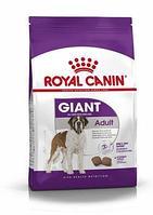 Royal Canin Giant Adult Pro сухой корм для собак очень крупных пород