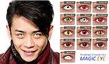 Карнавальные линзы Magic eye модель Red cat, фото 2