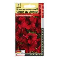 Семена цветов Петуния крупноцветковая ' Саксесс 360 Бургунди', 10 драже  F1 (комплект из 10 шт.)
