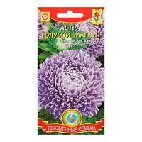 Семена цветов Астра пионовидная 'Голубой магнит', 0,2 г (комплект из 10 шт.)