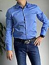 Рубашка мужская Enrico Cerini (0272), фото 5