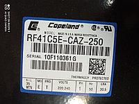 RF41C5E-CAZ-250