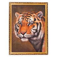 """Картина с каменной крошкой """"Тигр"""" багет 58х78 см В65737"""