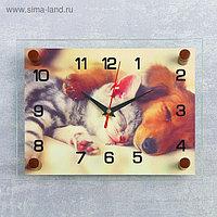 """Часы настенные, серия: Животный мир, """"Котёнок и собачка"""", 20х26 см микс"""