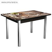Стол «Триумф» нераздвижной 1,0х0,7 м, покрытие стекло, ножки хром, венге