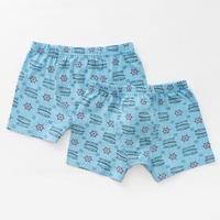 Комплект трусов для мальчика (2 шт.), цвет голубой, рост 110-116 см