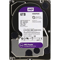 Western Digital Purple 6TB, (WD60PURZ)