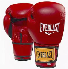 Перчатки боксерские Everlast 12oz