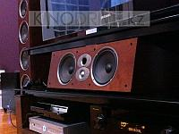 Центральный канал Polk Audio CSiA6 Вишня