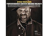 Виниловая пластинка Inakustik LP Taylor, Otis: Fantasizing About Bein (LP)
