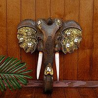 """Сувенир дерево """"Голова Слона"""" 46х17х50 см, фото 1"""