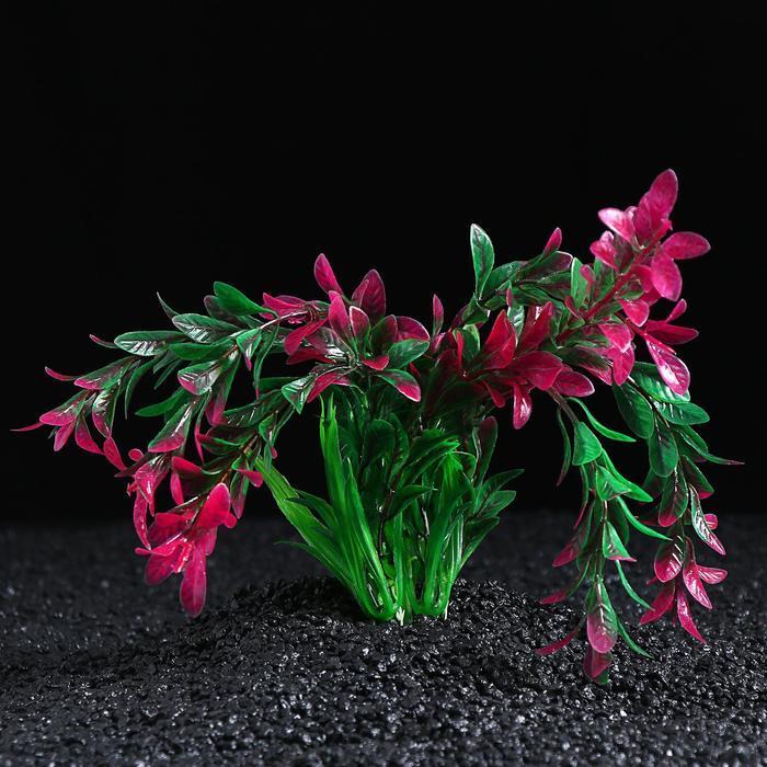 Растение искусственное с распылителем, 11 х 11 х 22 см