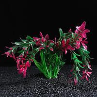 Растение искусственное с распылителем, 11 х 11 х 22 см, фото 1