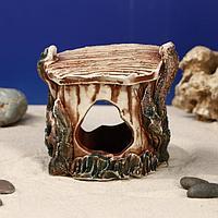 """Декорация для аквариума """"Черепашник"""", 9 х 9 х 11 см, микс, фото 1"""