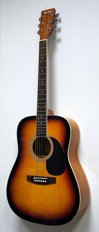 Акустическая гитара HOMAGE LF-4110-SB