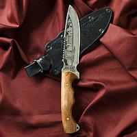 """Нож туристический """"Викинг"""" вощеный орех, сталь 40х13"""