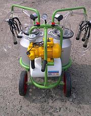 Доильный аппарат 2 пульсатора,2 бидона по 30л, фото 2