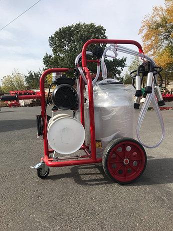 Доильный аппарат для коров 1 пульсатор 1 бидон Arden Турция, фото 2