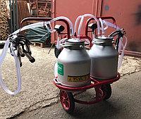 Доильный аппарат сухого типа Arden 2 пульсатора 2 бидона