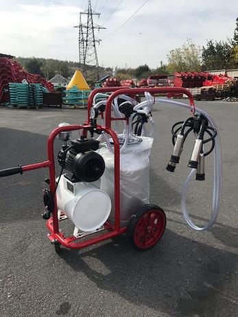 Доильный аппарат для коров ARD-1200 ArDen (Арден) Турция, фото 2