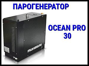 Парогенератор Ocean Pro 30 c автоматической промывкой