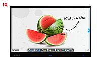 Интерактивный дисплей IQTouch C Pro Interactive Display