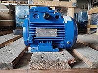 Электродвигатель 0.18кВт АИР56А2IM1081 380В, фото 1