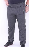 Спортивные брюки Великан демисезонные серый