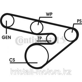 Ремень 7PK1125 Contitech