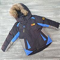 Зимняя куртка для мальчиков (синяя с голубыми вставками)