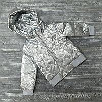 Куртка в серебристой расцветке (осень-весна)