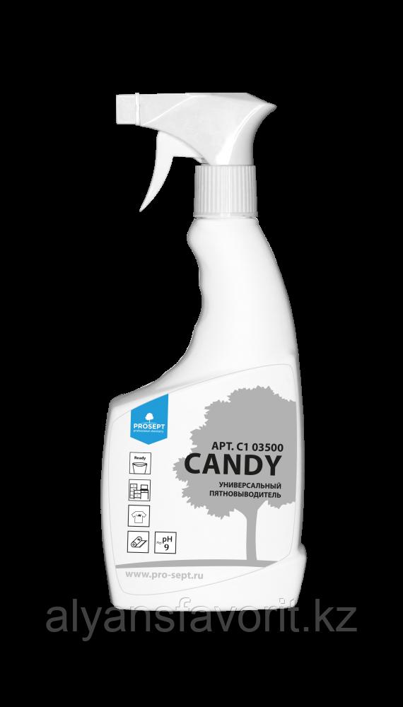 CANDY- универсальный пятновыводитель - спрей 500 мл. РФ