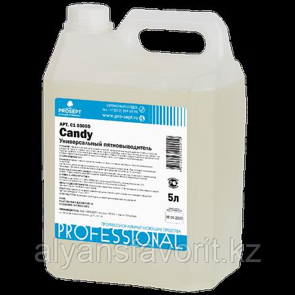 CANDY- универсальный пятновыводитель - 5 литров. РФ, фото 2