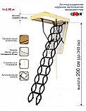 Дополнительная секция OMAN FLEX DSS DS-3 для чердачных лестниц OMAN тел.Whats Upp. 87075705151, фото 5