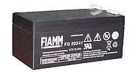 Аккумуляторная батарея Fiamm FG 20341