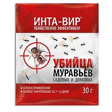 Инсектицид Инта-Вир средство от муравьев, 30 г
