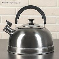 Чайник со свистком «Семейный», 2,6 л