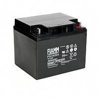 Аккумуляторная батарея Fiamm FG 24204