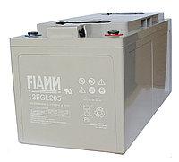 Аккумуляторная батарея Fiamm 12 FGL 205