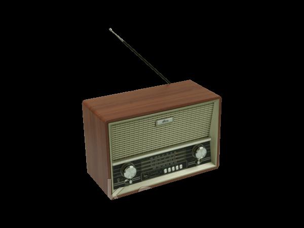 Радиоприемник портативный Ritmix RPR-102