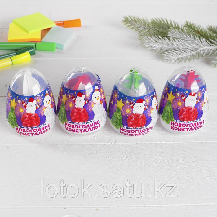 Набор для опытов «Новогодние кристаллы» - фото 4