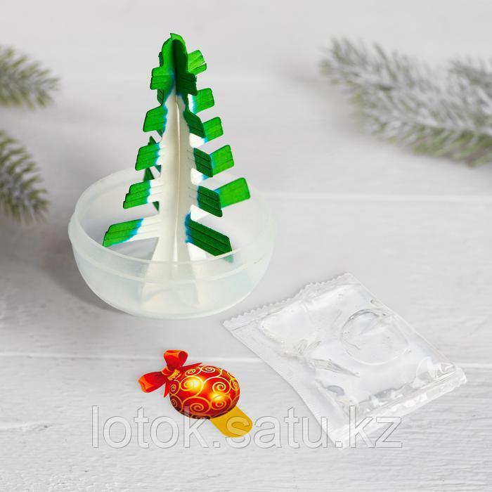 Набор для опытов «Новогодние кристаллы» - фото 5