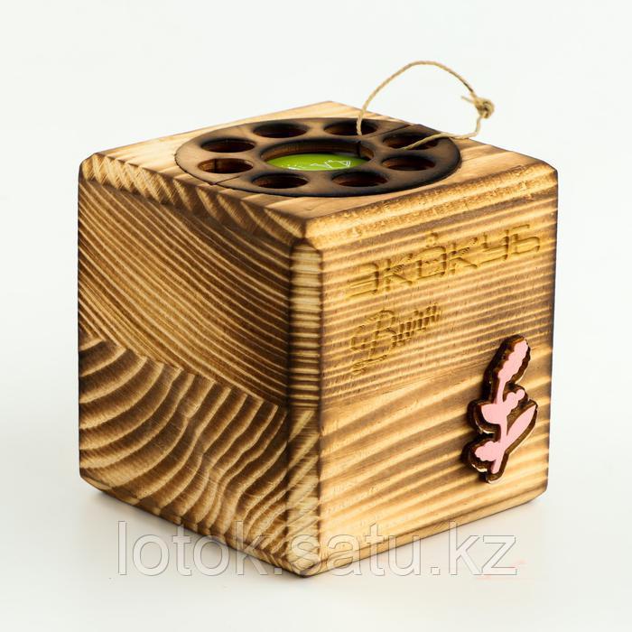ЭкоКуб для выращивания мультибокс «Мимоза» - фото 2