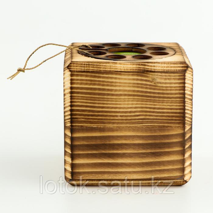 ЭкоКуб для выращивания мультибокс «Мимоза» - фото 3