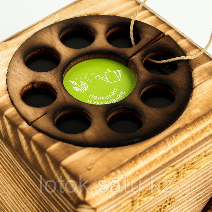 ЭкоКуб для выращивания мультибокс «Мимоза» - фото 5