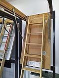 Чердачная лестница 60х120х335 FAKRO LWS SMART тел./Whats App.8-707-5705151, фото 7