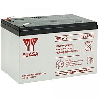 Аккумуляторная батарея Yuasa NP 12-12